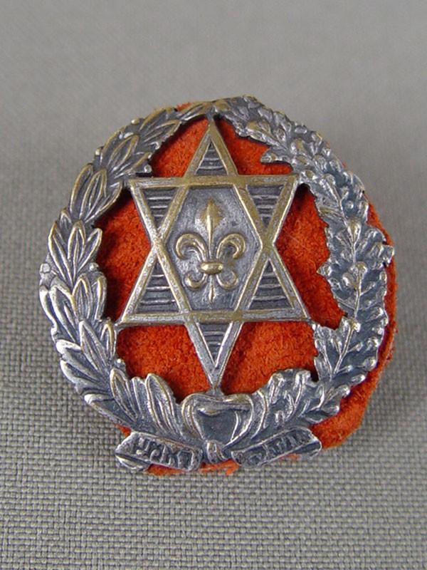 Знак «Палестина» Французского легиона (№617), <nobr>1920-е годы</nobr>, латунь, эмаль. <i>Редкость</i>