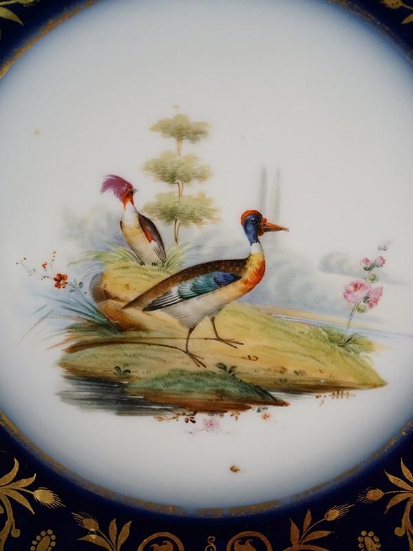 Тарелка «Птицы», фарфор, роспись, кобальт, золочение. Западная Европа, XIX век, диаметр 22,5см